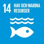 Hav och marina resurser - Globala målen