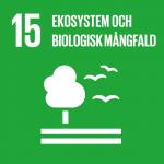 Ekosystem - Globala målen